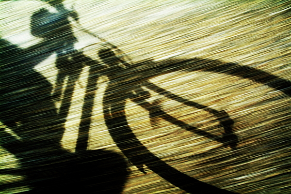 Shadow Of A Person Riding A Bicycle Photograph