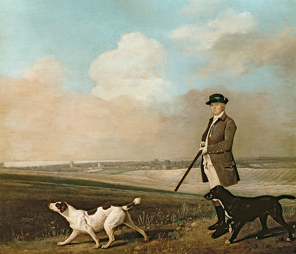 Sir Painting - Sir John Nelthorpe by George Stubbs