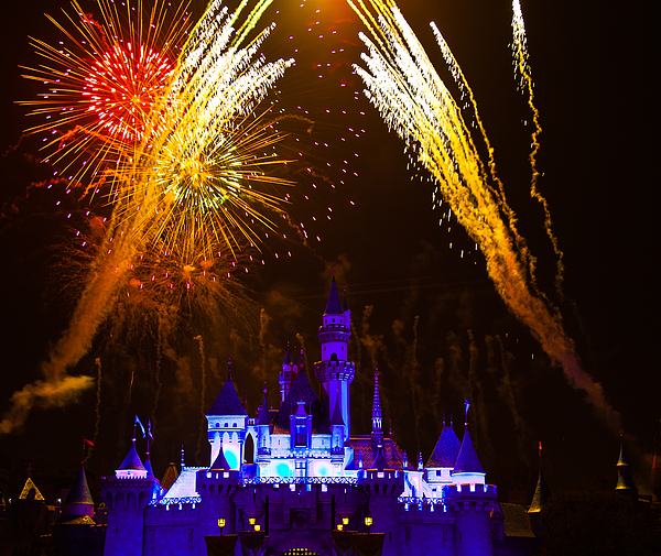 Sleeping Beauty Castle And Fireworks Photograph