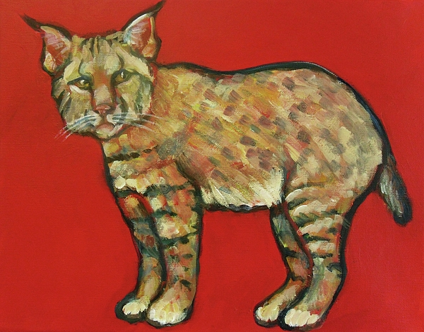 Bobcat Painting - Smug Bobcat by Carol Suzanne Niebuhr
