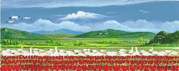Washington State Skagit County Painting - Snow Geese And Tulips by Bob Patterson