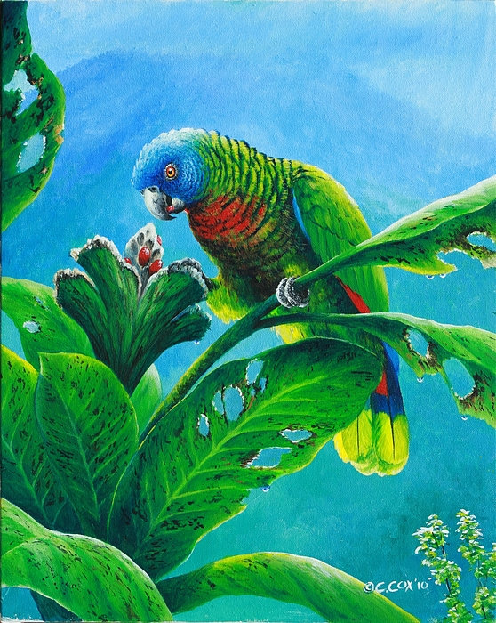 Green parrot painting - photo#23