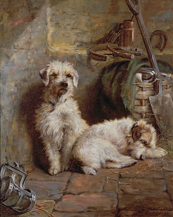 Dogs; Terriers; Tools; Stable; Basket; Spade; Lantern; Bottle; Horseshoe Painting - Stablemates by John Fitz Marshall