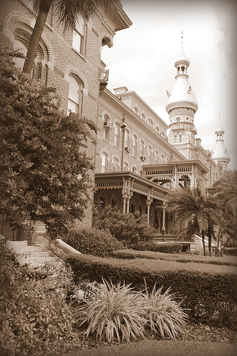 Tampa Photograph - Tampa Gem In Sepia by Carol Groenen