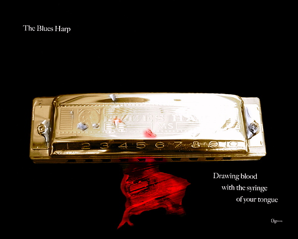 Harmonica Photograph - The Blues Harp by Steven  Digman