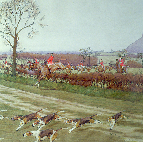 Hunt; Dogs; Hounds; Countryside; Jumping; Hedge; Trees; Horses ;j; Freeman Painting - The Cheshire Away From Tattenhall by Cecil Charles Windsor Aldin