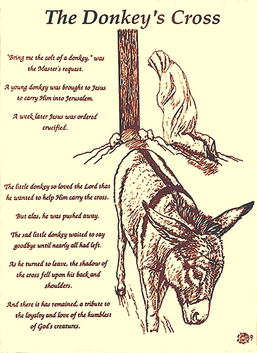 The Donkey's Cross Print by Mary Singer