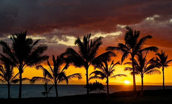 Hawai'i Photograph - The Last Sunset by James Walsh