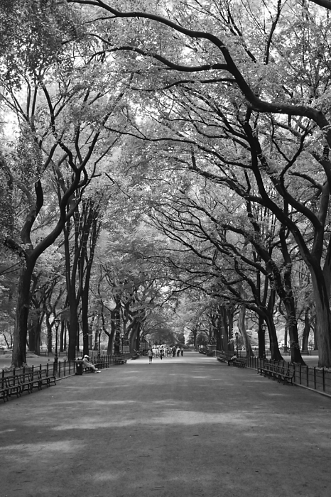 New York City Photograph - The Mall And The Poets by Christopher Kirby