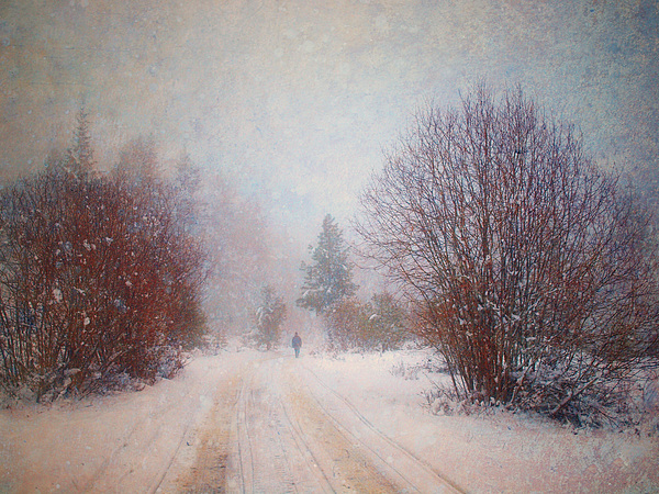Snow Photograph - The Man In The Snowstorm by Tara Turner