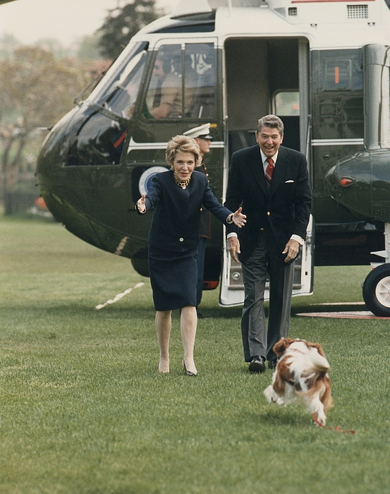 The Reagans Being Greeted By Their Dog Photograph