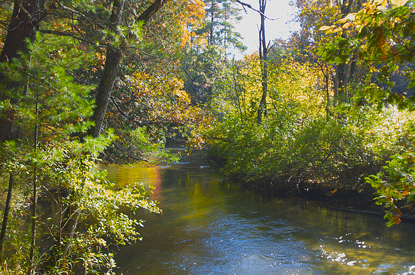Rivers Photograph - The River  by Sheryl Thomas