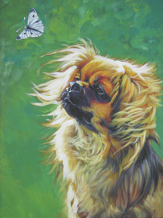 Tibetan Spaniel And Cabbage White Butterfly Painting