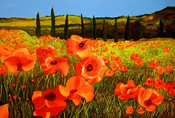 Poppies Painting - Tuscan Poppies by JoeRay Kelley