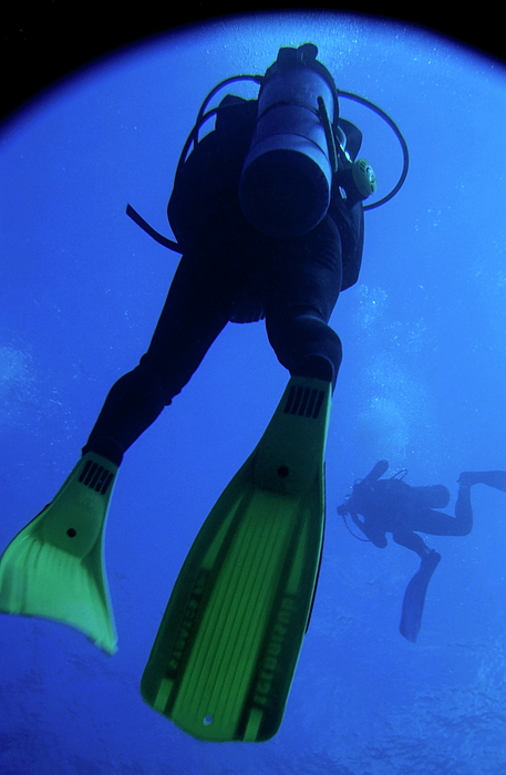 Adventure Photograph - Two Scuba Divers Swimming by Sami Sarkis