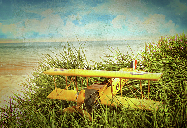 Vintage Toy Plane In Tall Grass At The Beach Photograph