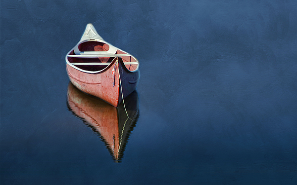 Canoe.boat Photograph - Well Anchored by Robin-lee Vieira