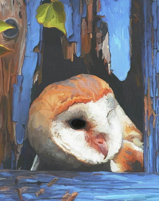 Owl Painting - Who Are You by Patti Siehien