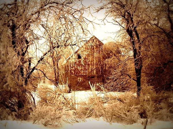 Winter Wonderland Sepia Print by Julie Hamilton