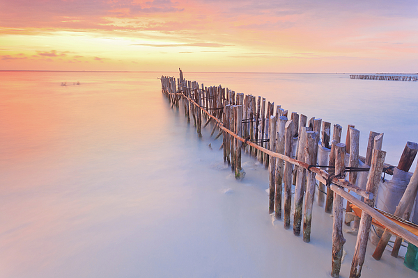 Horizontal Photograph - Wooden Posts Into  Sea by Enzo Figueres