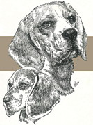 Beagle Father And Son Fine Art Print by Barbara Keith