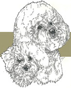Bichon Father And Son Fine Art Print by Barbara Keith
