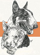 Bull Terrier Father And Son Fine Art Print by Barbara Keith