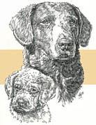 Chesapeake Bay Retriever Father And Son Fine Art Print by Barbara Keith