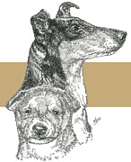 Collie - Smooth- Father And Son Fine Art Print by Barbara Keith