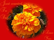 I Love You In Red And Orange Print by Dawn Hay