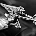 1934 Packard Hood Ornament 2 by Jill Reger