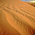 Sand Dune At Great Sand Hills In Scenic Saskatchewan by Mark Duffy