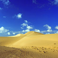 Sandy Desert by MotHaiBaPhoto Prints