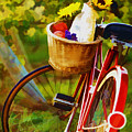 A Loaf Of Bread A Jug Of Wine And A Bike by Elaine Plesser