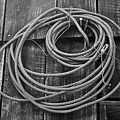 A Study Of Wire In Gray by Douglas Barnett
