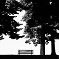 A Walk In The Park by Artecco Fine Art Photography