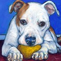 American Bulldog With Yellow Ball by Dottie Dracos