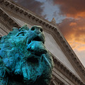 Art And Lions by Anthony Citro