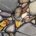 Autumn Stones by JQ Licensing
