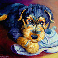 Bad Puppy Airedale Terrier by Lyn Cook