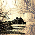 Barn Out Back 2 by Cheryl Young