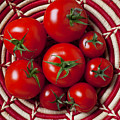 Basket Full Of Red Tomatoes  by Garry Gay