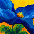 Blue Poppy by Marion Rose