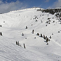 Blue Sky Basin Panorama - Vail Colorado by Brendan Reals
