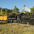 Bound For Durango by Jerry McElroy