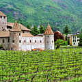 Castle And Vineyard In Italy by Greg Matchick