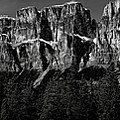 Castle Mountain Panoramic by Brent Mooers