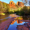 Cathedral Rock Sedona by Matt Suess