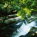 Clare Glens, Co Clare, Ireland by The Irish Image Collection
