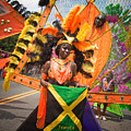 Dc Caribbean Carnival No 13 by Irene Abdou